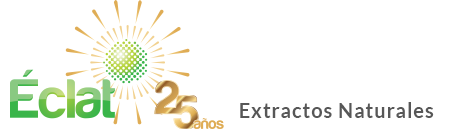 Logo Eclat