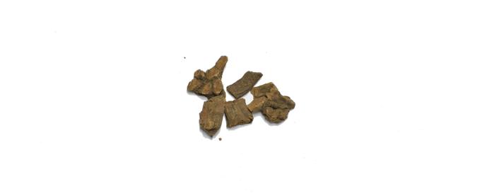 Crameria (Ratamia)