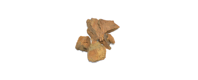 Cocolmeca Root