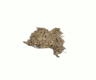 alcachofaedit
