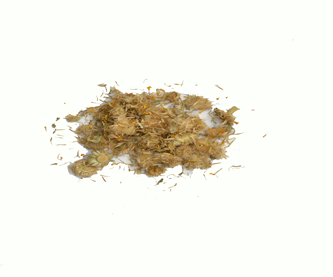 arnica-floredit