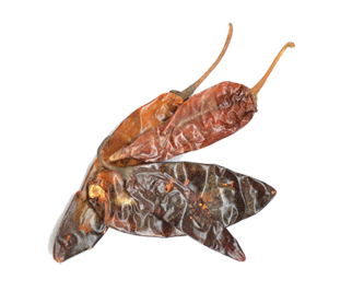 chileguajillo