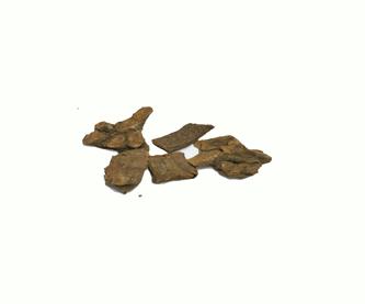 crameria-ratamia