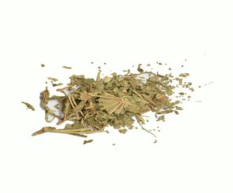 hojas-de-ricino