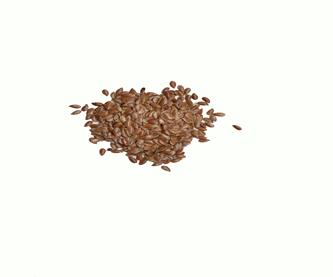 linaza-semilla