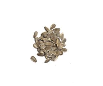 semilladegirasol